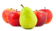 Best apples and pears for baby food