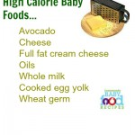 High Calorie Baby Foods