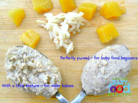Babys chicken mango and brown rice puree the homemade baby food babys chicken mango and brown rice puree forumfinder Image collections