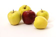 apples for baby food - red or green