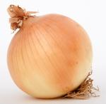 Onion baby food