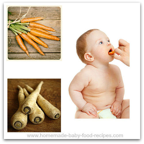 Parsnip and carrot puree for baby