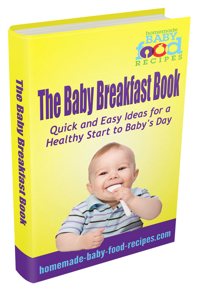 The Baby Breakfast Book