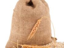 Hull-less barley
