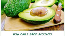 How can I stop avocado turning brown