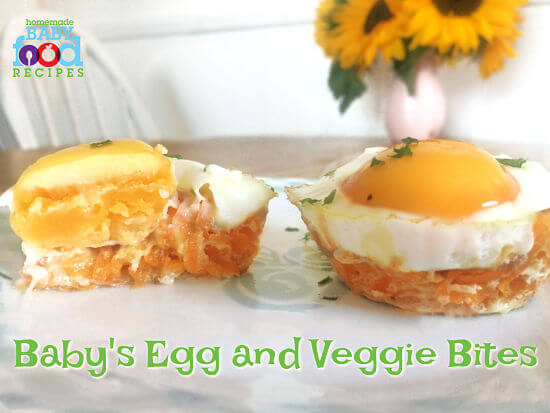 Baby's egg and veggie bites