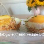 Baby's Egg and Veggie Bites