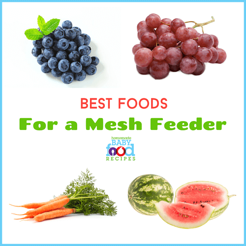 Best foods for a mesh feeder