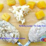 Baby's Chicken, Mango and Brown Rice Puree