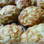 New Baby Finger Food Recipe – Zucchini Muffins
