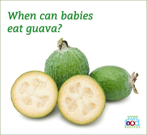 Guava Baby Food Ideas The Homemade Baby Food Recipes Blog The
