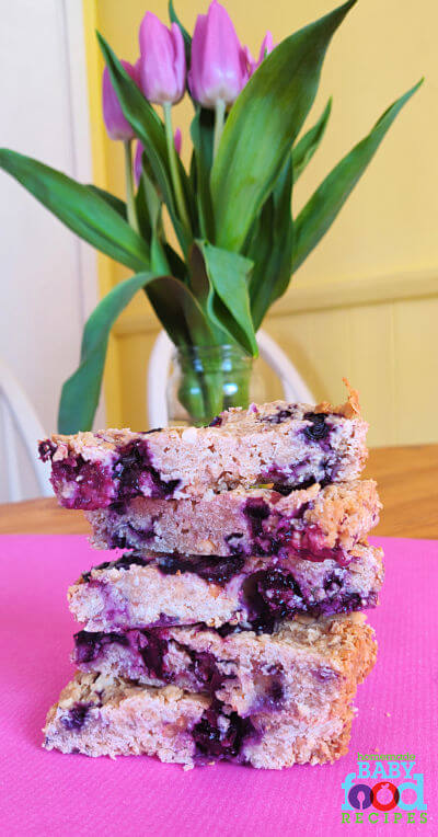 Blueberry bars for baby