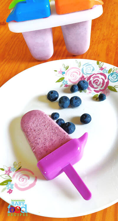 A blueberry popsicle with fresh blueberries